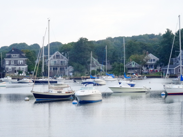 Woods Hole harbor race morning