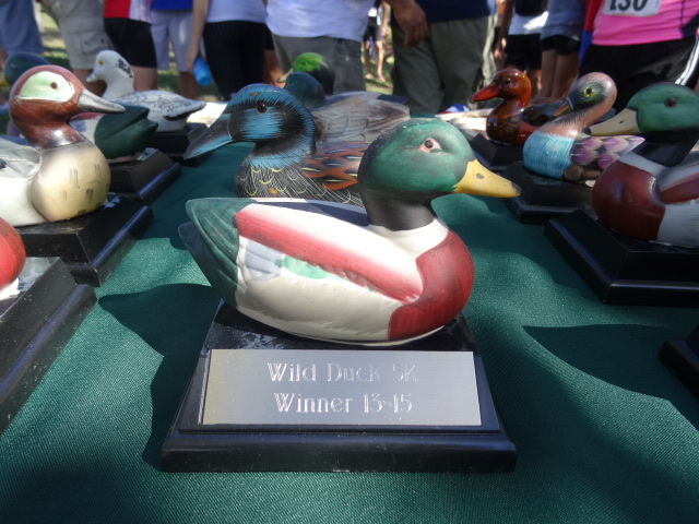 All-Duck Trophies