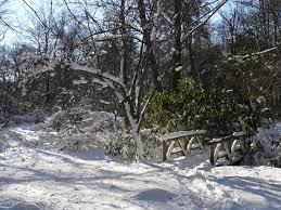 Webster Conservation Area